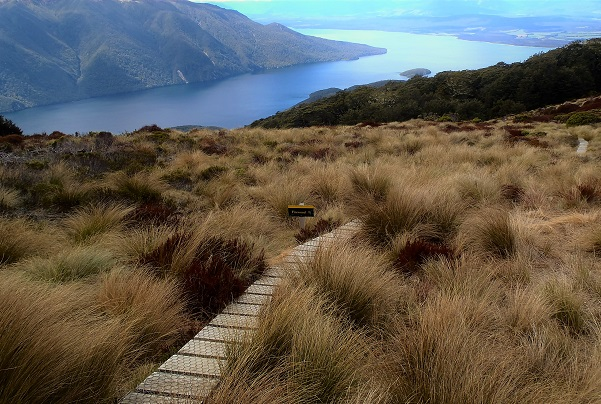 Looking down on Lake Te Anau from the Kepler Track