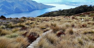 Kepler Track - View of Lake Te Anau from Luxmore Hut
