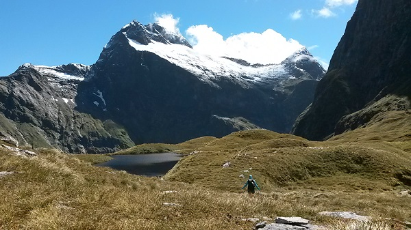 Fiordland Great Walk