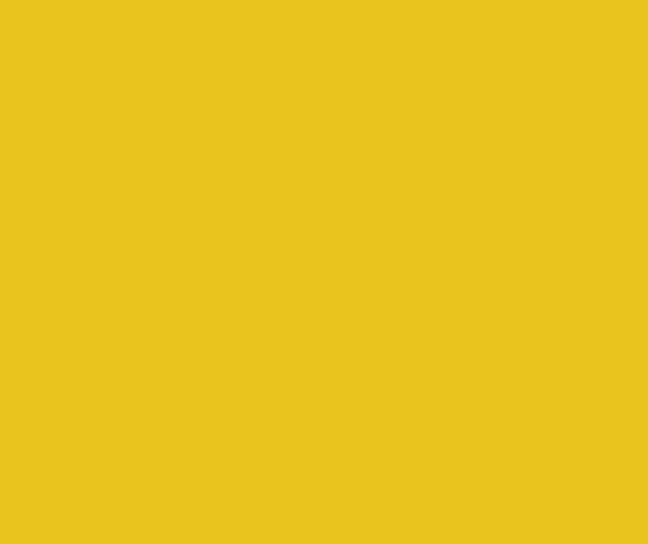 Easyhike Yellow