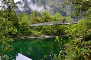 Great Walks - Milford Track